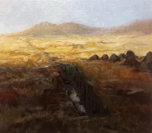 Sliced Bog , Connemara