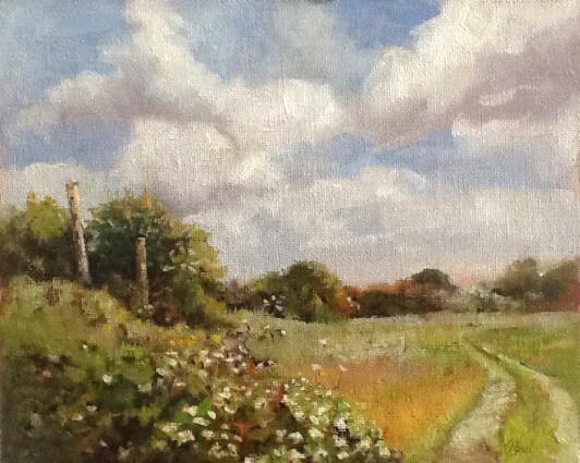 Wilde's Field