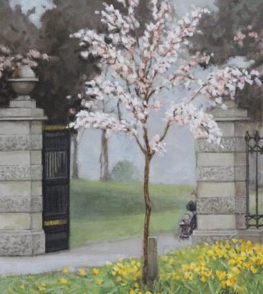 Spring Blossom , Kenure, Rush Co Dublin
