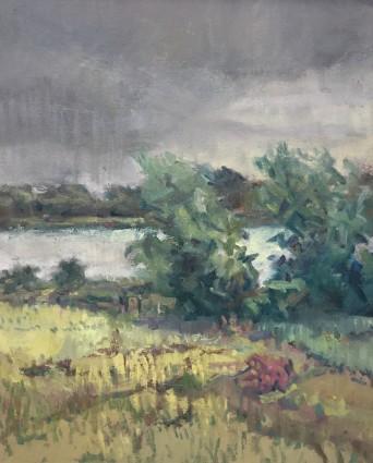 Approaching Rain , Wexford